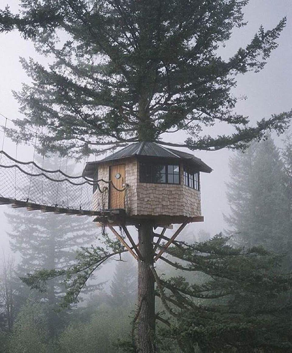 emilybenti | Treehouses | Pinterest | Baumhaus, Hochsitz und Gebäude