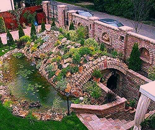 Photo of 25 Root Cellars Adding Unique Structures to Backyard Designs