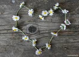 Image result for child making a daisy chain