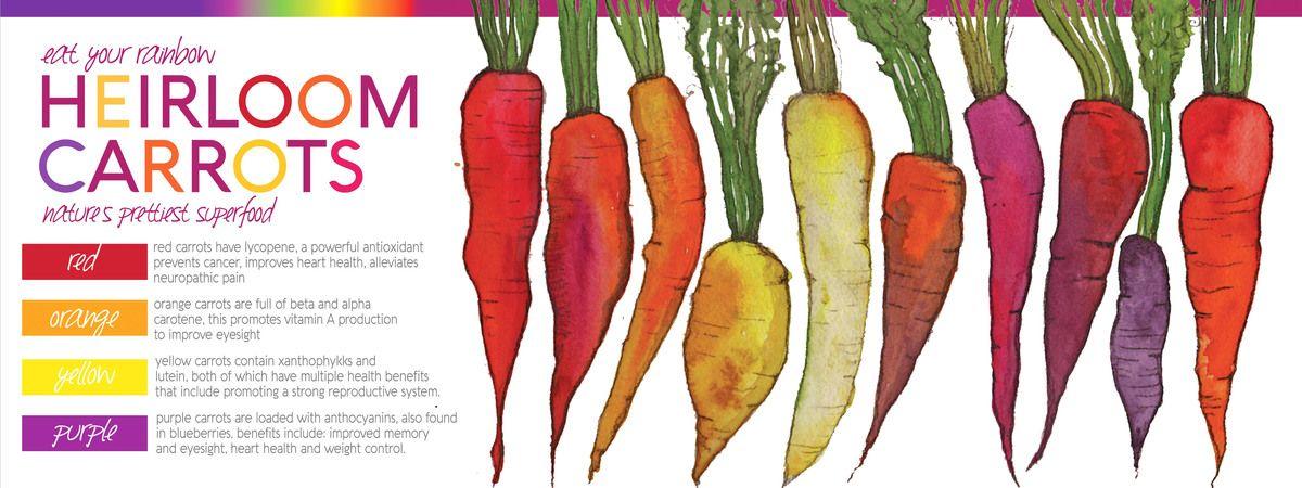 Rainbow Carrots By Lisa Graves Rainbow Carrots Rainbow Smoothies Eat The Rainbow