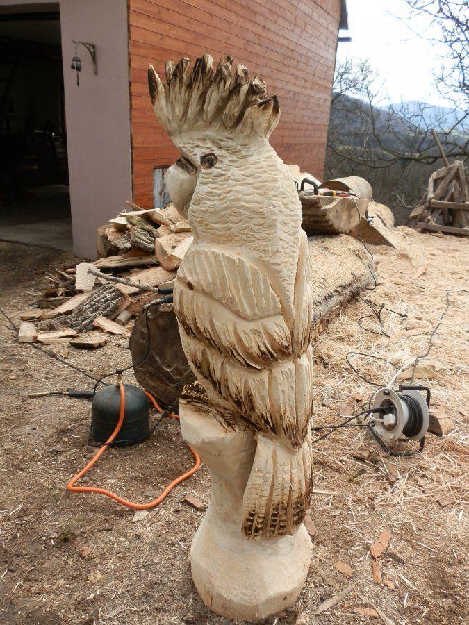Kakadu wood carving pinterest sculpture bois