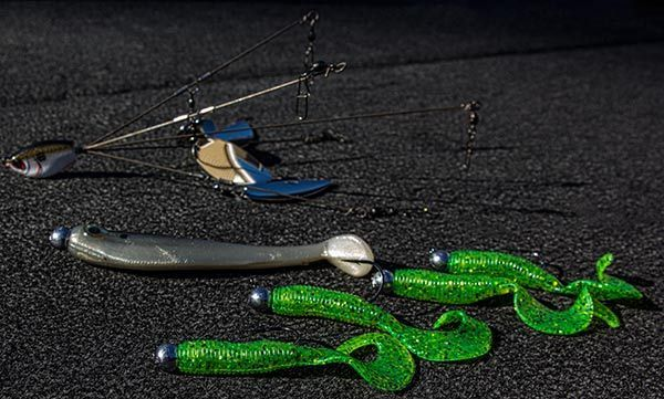Winter Bass Fishing Lures Tips And Tactics Ud Fishingtackle