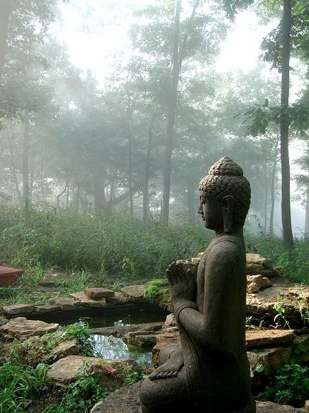 Buddha - Boeddha