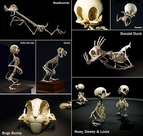 Which Is Your Favorite Skeleton Cartoon Characters Created By - Skeletons favourite childhood cartoon characters