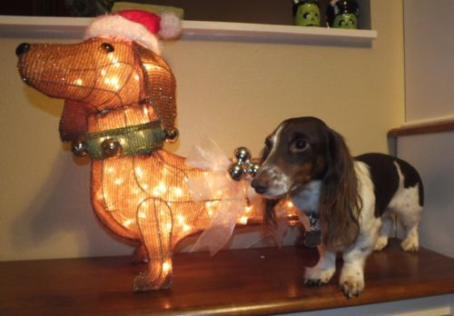Lighted Dachshund Christmas Outdoor Yard Decoration Tinsel Sausage Dog Dachshund Christmas Outdoor Christmas Yard Decor