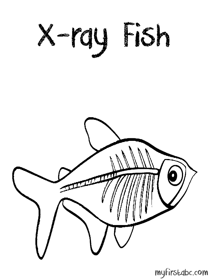 X Ray Fish Coloring Pages A To Z Animals Fish Coloring Page