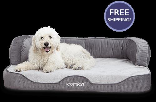 Best Serta Icomfort Sofa Sleeper Gel Memory Foam Pet Bed 640 x 480