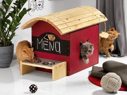 Toom Kreativwerkstatt Selber Bauen Und 333 Gewinnen Selber Bauen Kreativ Katzen Haus