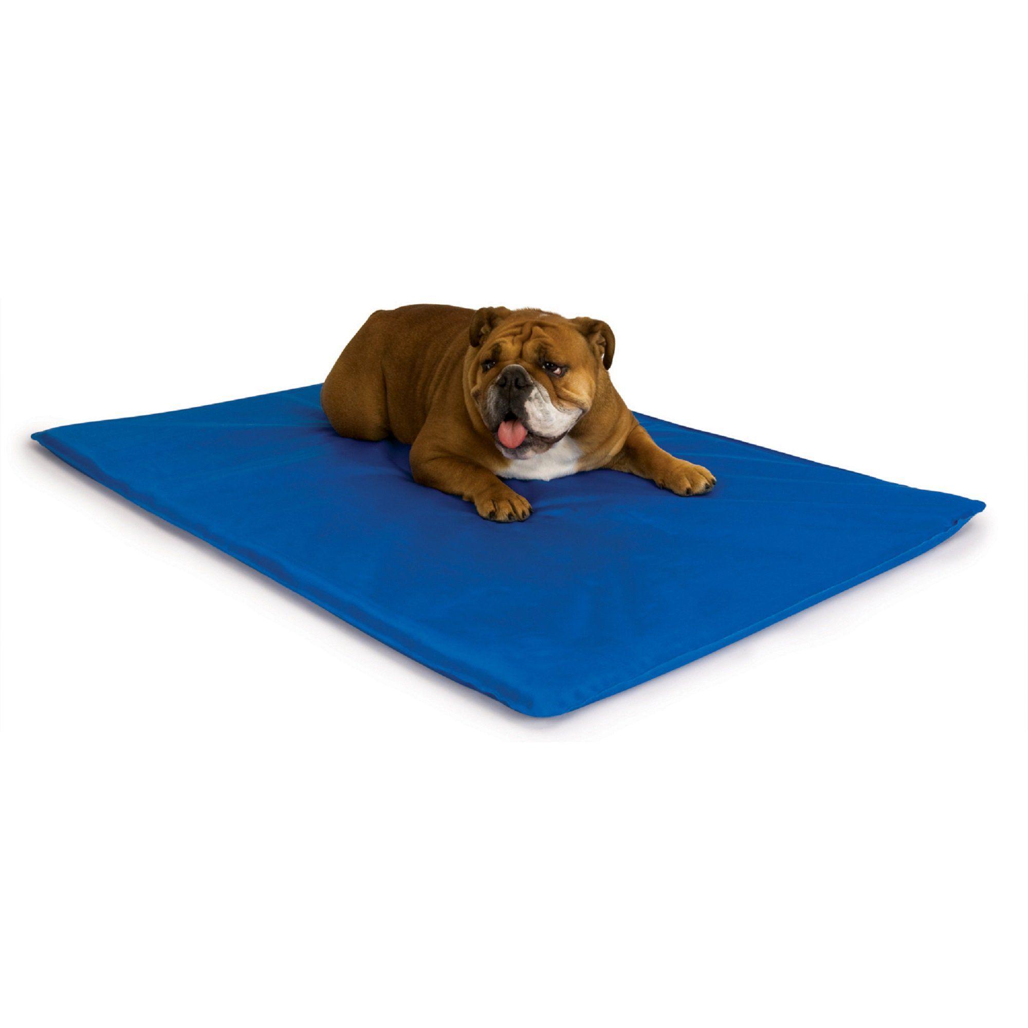 K H Cool Blue Bed Iii For Dogs 22 L X 32 W Cool Dog Beds
