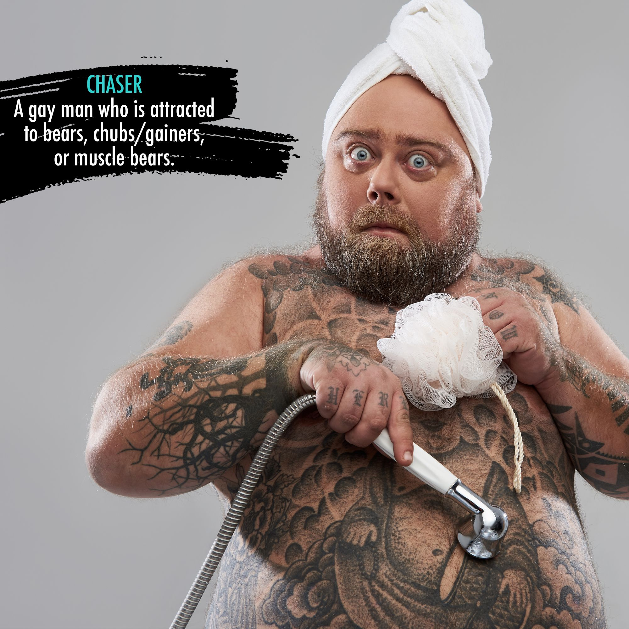 Gay slang bear