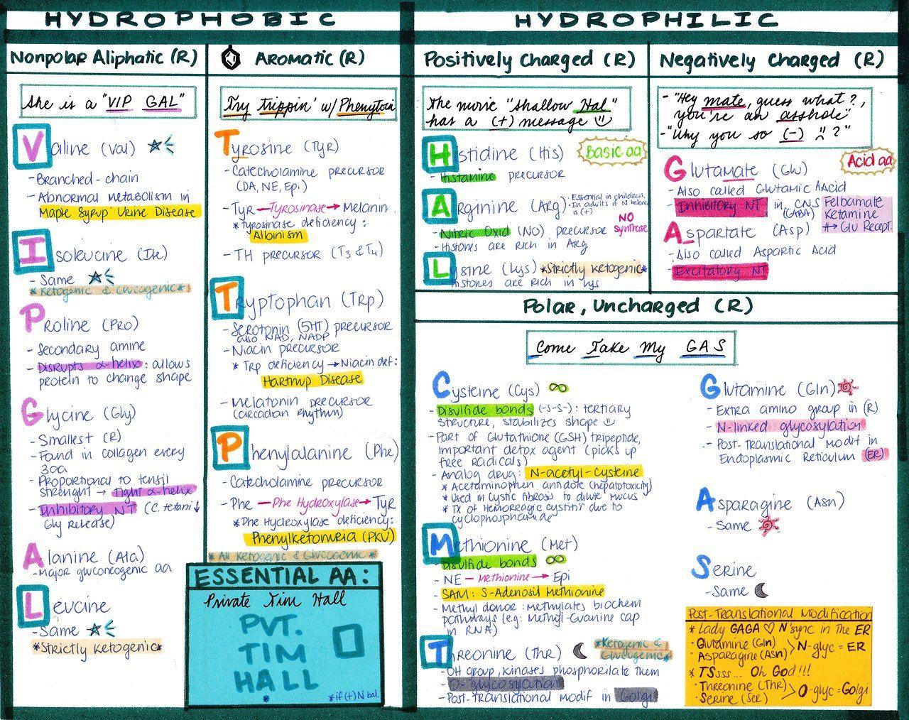 Biochemistry Review Guide