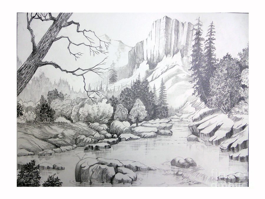 Value Nature The Darkness Shows Diffent Values Of The Drawing As To The Light Parts To Pencil Drawings Of Nature Nature Drawing Colorful Drawings