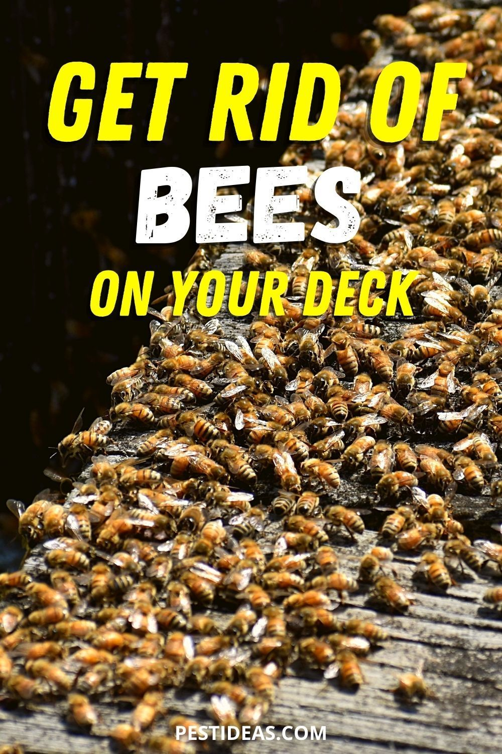 Get rid of bees on your deck in 2020 getting rid of bees