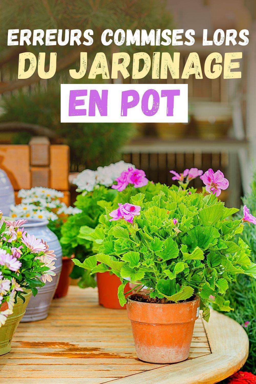 Erreurs Commises Lors Du Jardinage En Pot En 2020 Jardinage En Pots Jardinage Jardinage Potager