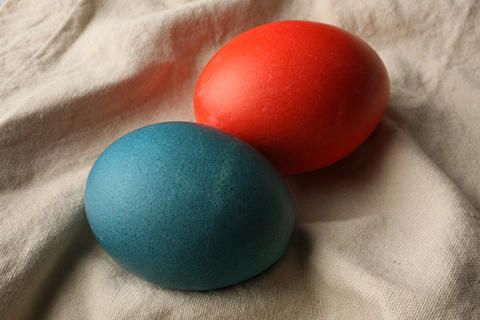 Dyed easter eggs recipe egg easter and food dye easter eggs with food coloring 12 c water 1 tsp white forumfinder