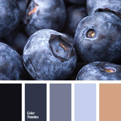 Almost Black Color Blueberries Blueberry Brown Solution For Designers Cyan Dark Light Blue