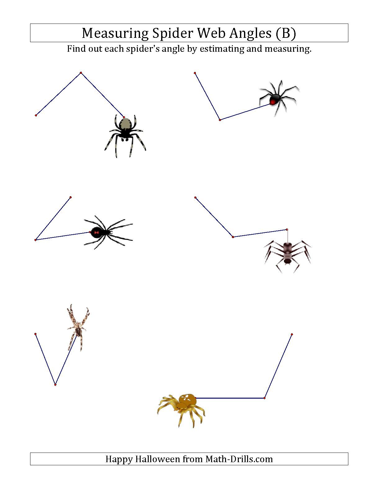 The Measuring Spider Web Angles B