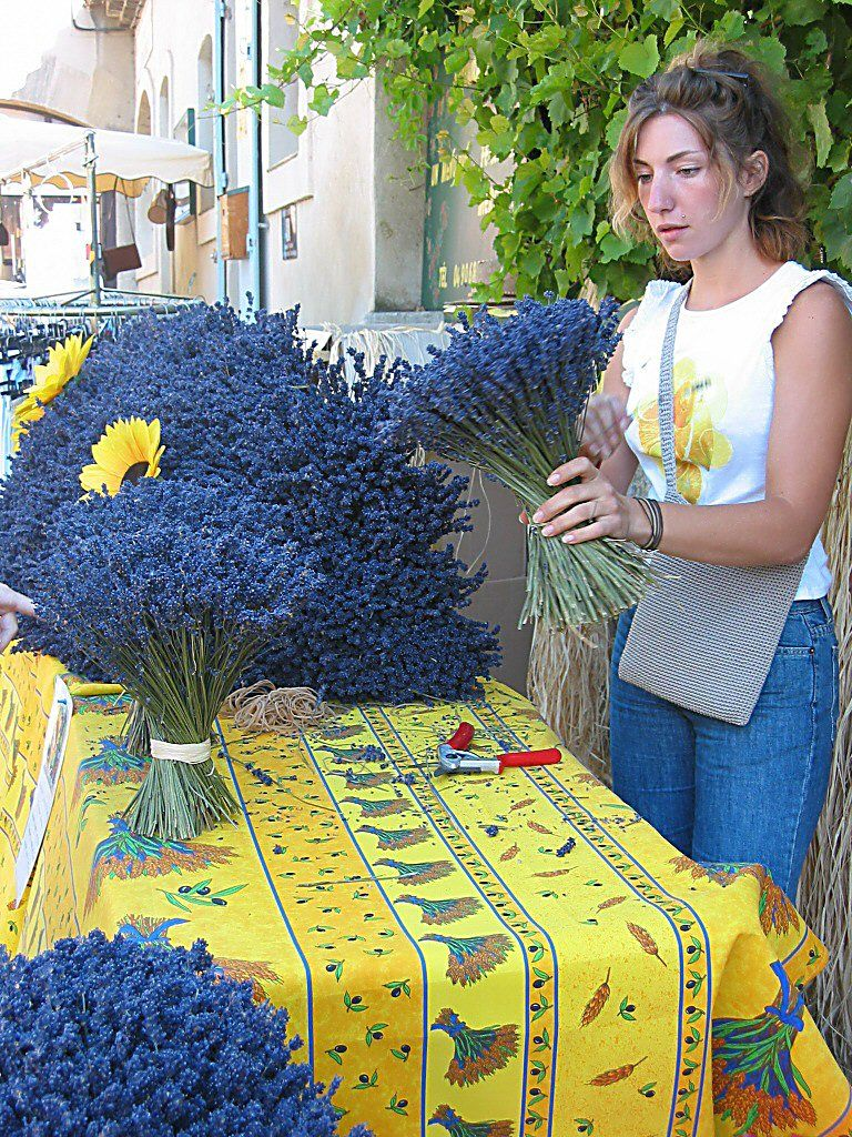 I want to buy lavendar like this, and the table cloth, too, in Provence!