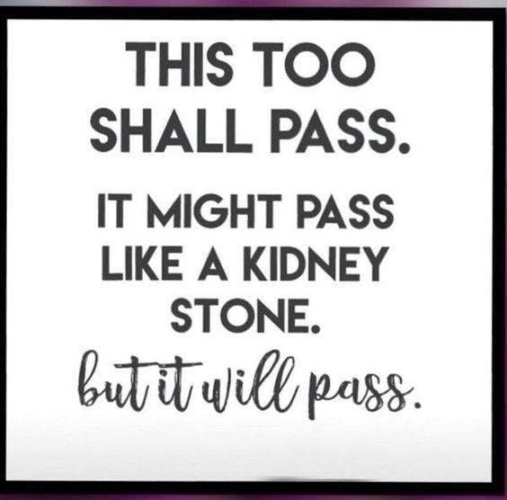 [Image] It Will Pass...