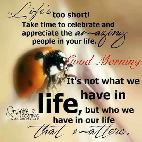 Best Spiritual Good Morning Quotes: Pin By Kalpana On Good Morning