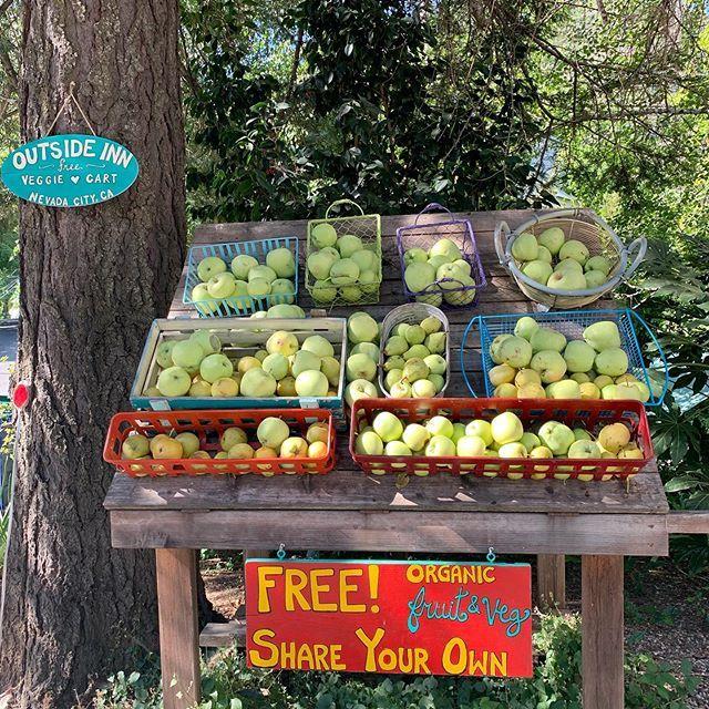 Outside Inn's free veggie cart #NevadaCity | Nevada city ...