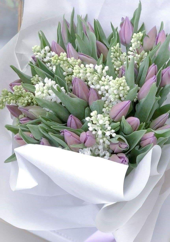 Pin oleh Олександр Сенів di Tulips