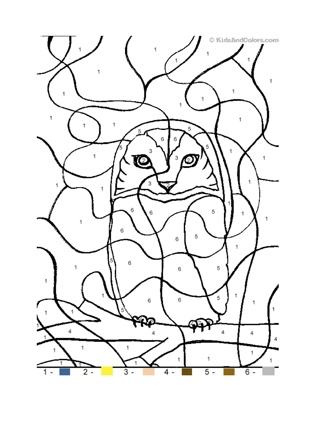 letter o owl color by number homeschooling alphabet animals animal worksheets. Black Bedroom Furniture Sets. Home Design Ideas