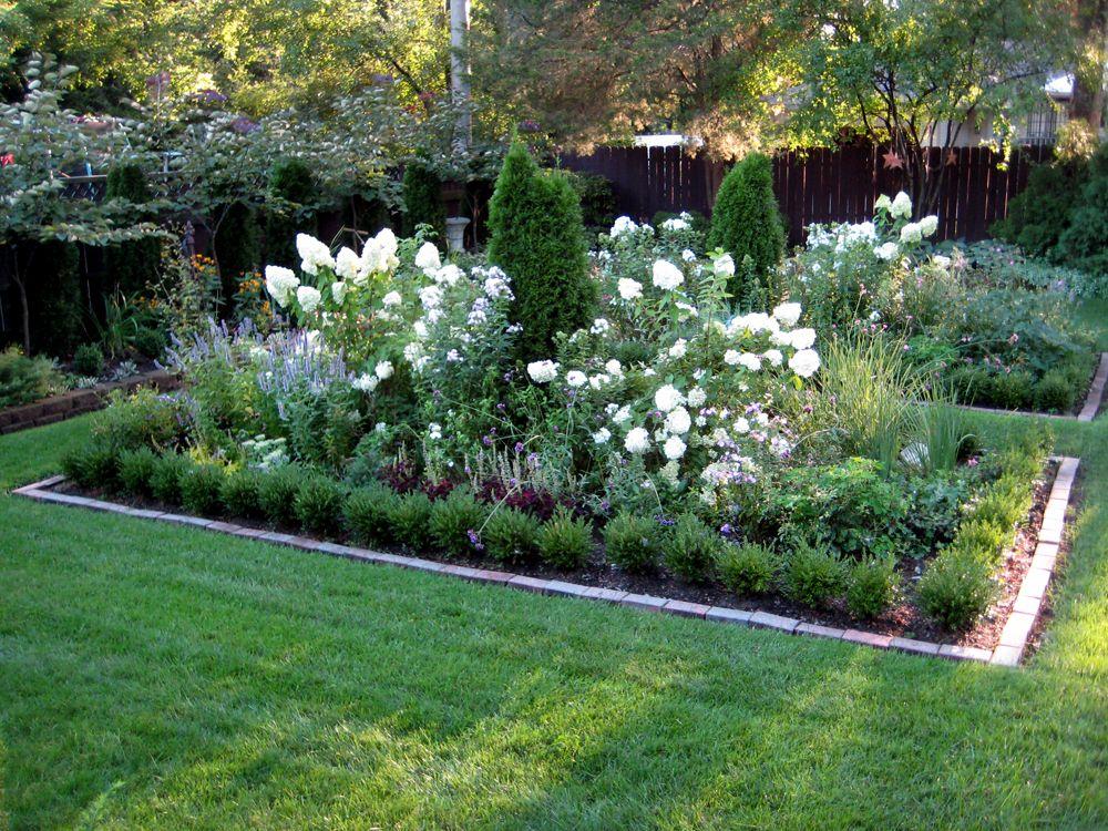 Limelight hydrangeas help brighten up the August garden