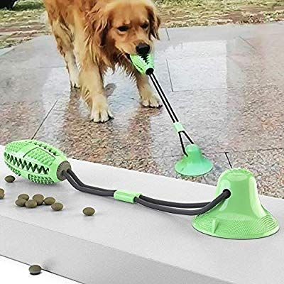 Pet Supplies Suction Cup Dog Toy Upgraded Dog Molar Bite Chew