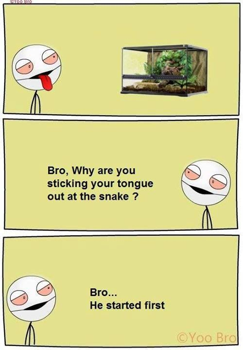 Top 27 Bro Memes Fun Quotes Funny Stupid Funny Memes Crazy