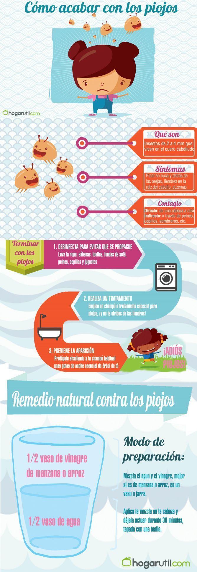Que son los piojos y como acabar con ellos. #salud #piojos #remediosnaturales #infografia