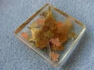 Image result for preserving leaves in resin   art   How to preserve