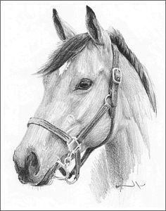 Easy Pencil Sketches