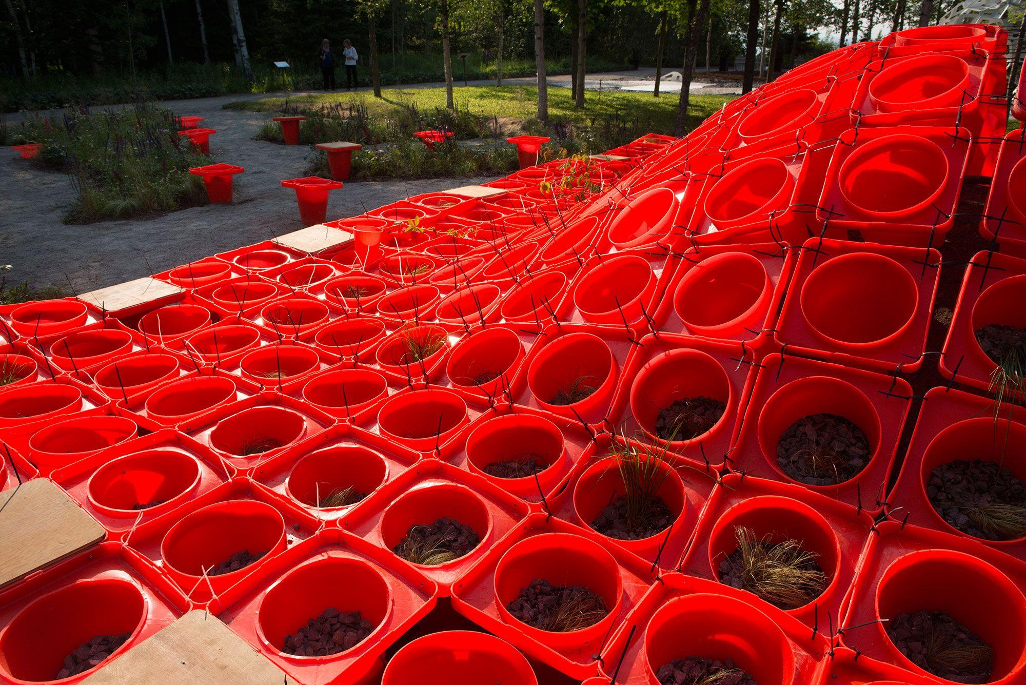 Cone Garden Bocksili