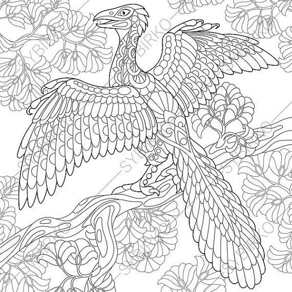 adult coloring pages dinosaur archeopteryx zentangle. Black Bedroom Furniture Sets. Home Design Ideas