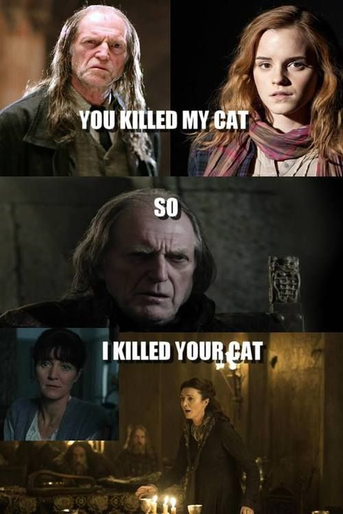 Man Hermione And Walder Frey Have Some Issues To Work Out Harry Potter Games Game Of Thrones Funny Harry Potter Funny