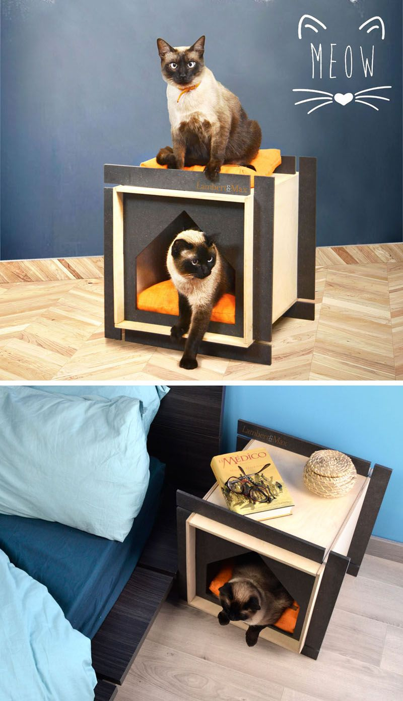This Collection Of Modern Pet Houses Were Inspired By
