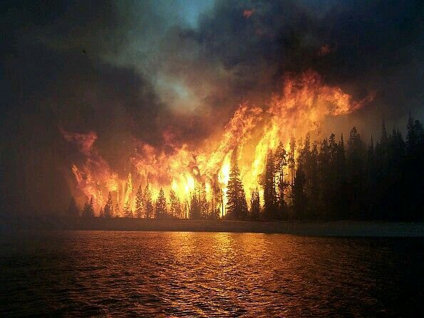 Wildfire Reflecting In The Lake Pictures Fire Forest Fire