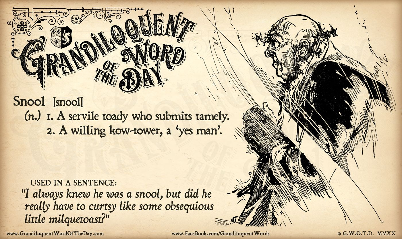 100+ Grandiloquent Word of the Day ideas in 2020 | word of the day, new  words, words