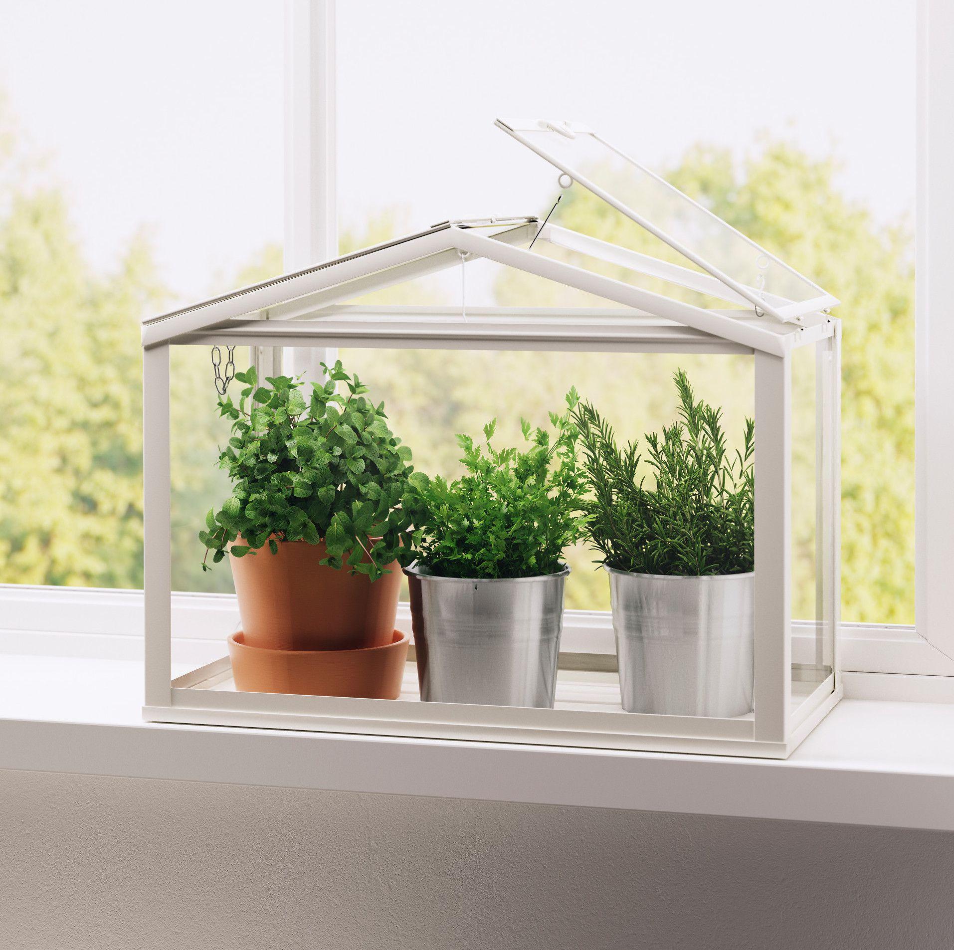 11 Fresh Ideas For Indoor Herb Gardens
