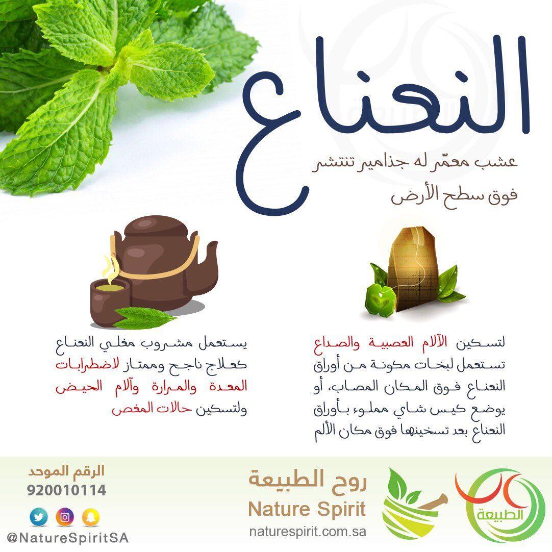 فوائد النعناع Herbs For Health Health And Nutrition Health Fitness Nutrition