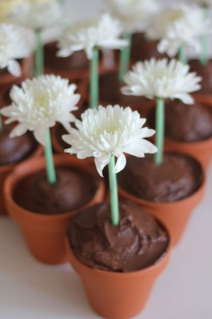Flower pot cupcakes and cute garden party theme!