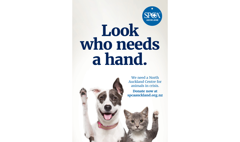 Advertising Campaign For Spca Auckland By Onfire Design Onfire Design
