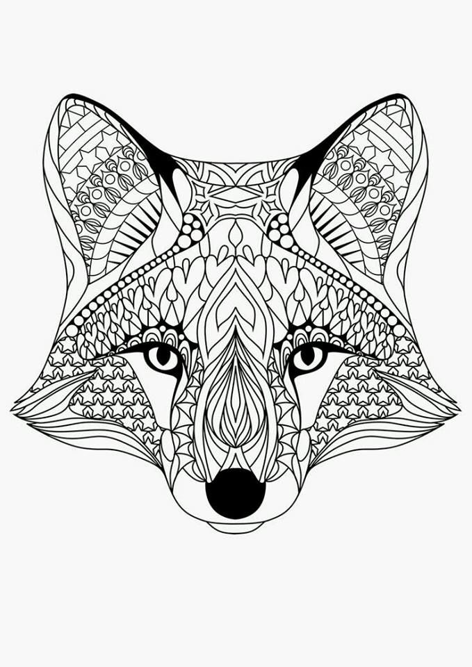 raposinha zentangles adult colouring pages free colouring for adults colouring pages for adults