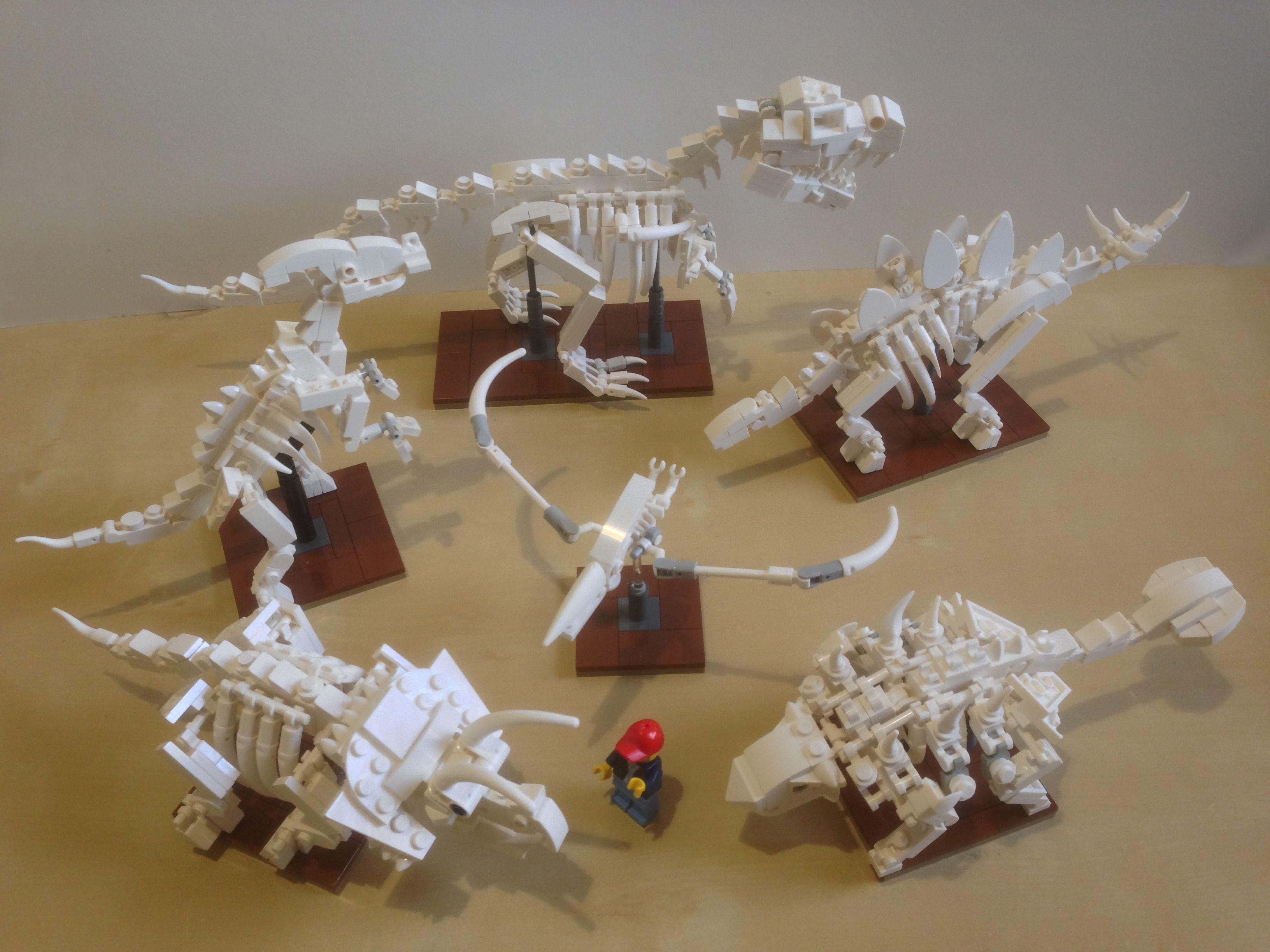 6 in 1 Dinosaur Fossils #dinosaurfossils