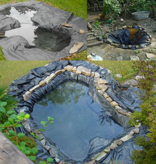 El estanque en el huerto ecol gico for Estanque koi pequeno