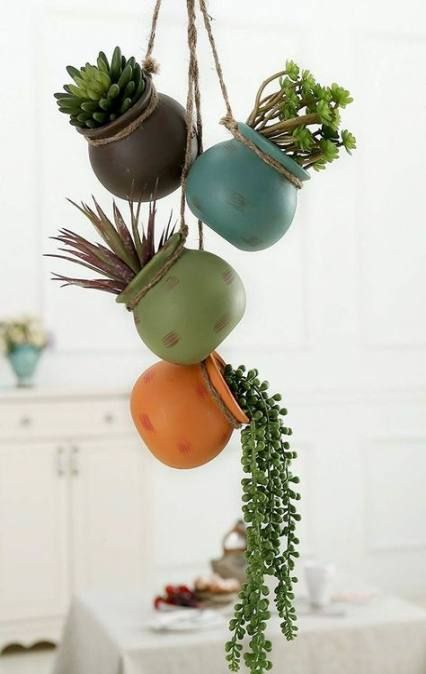 33 Ideas Hanging Succulent Display #succulent
