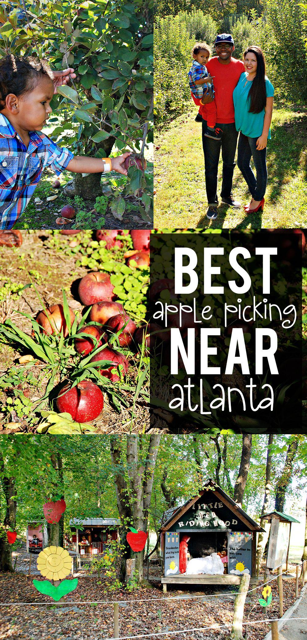 Where to Go Apple Picking with Kids Near Atlanta Atlanta