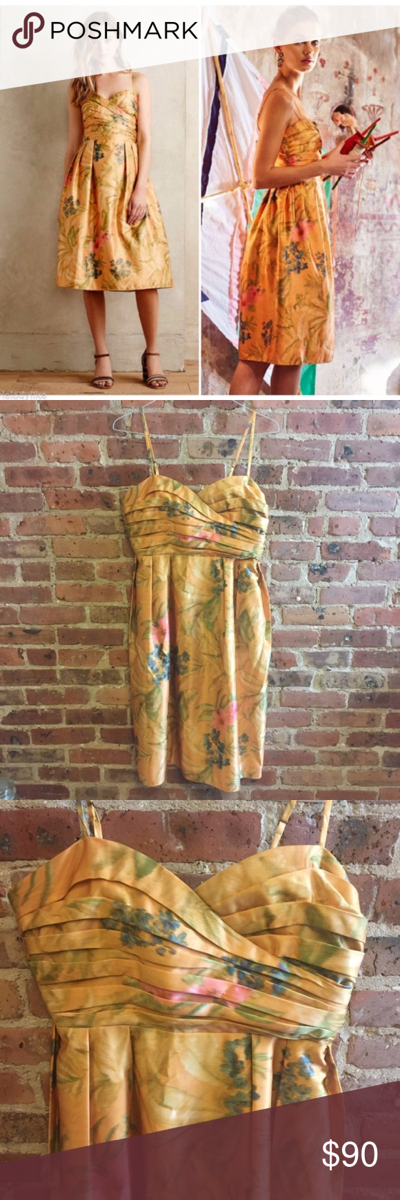 NWT James Coviello Botanical Dress Anthro 12 Imbued with