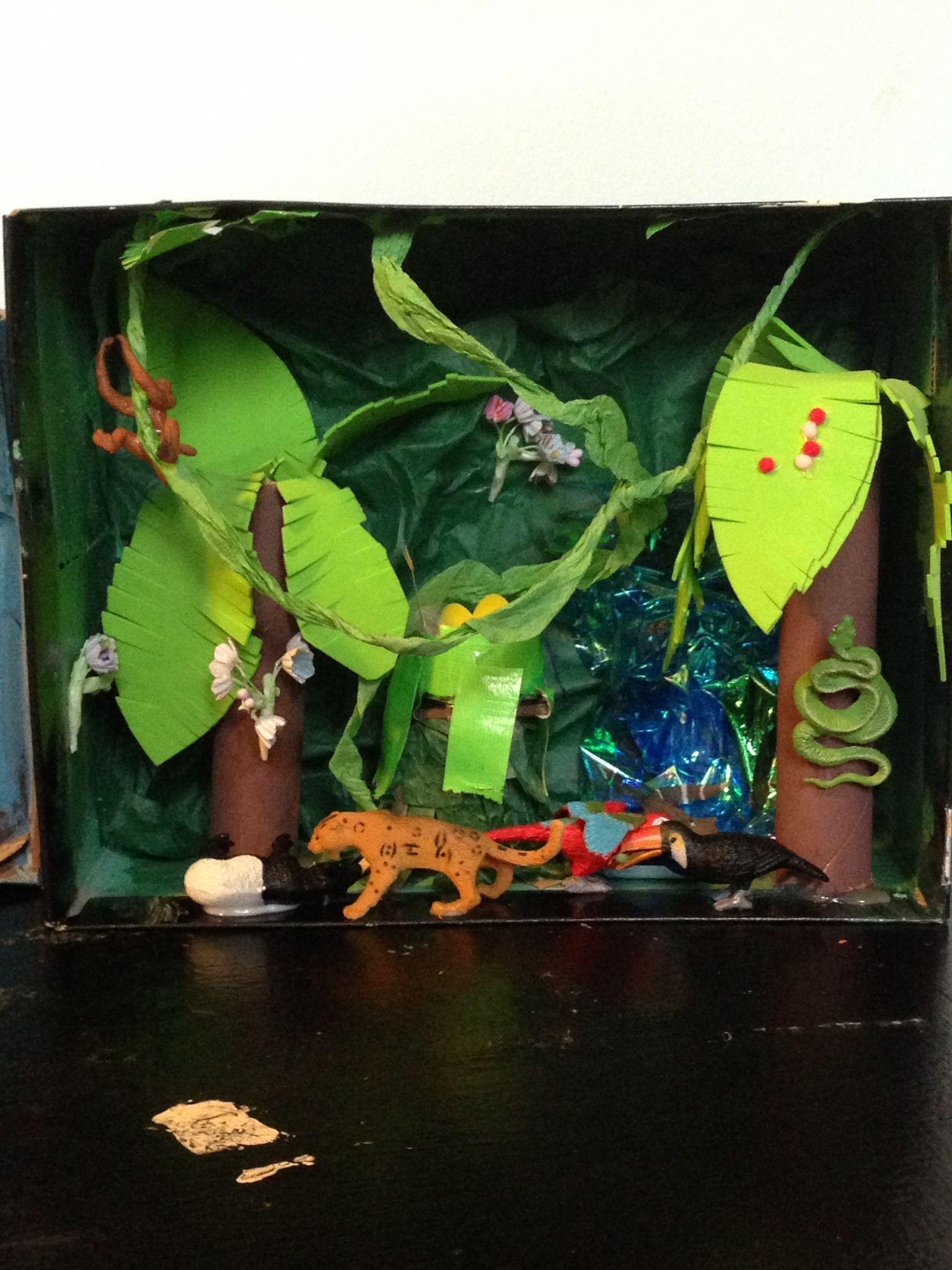 His Rain Forest Diorama 1st Grade